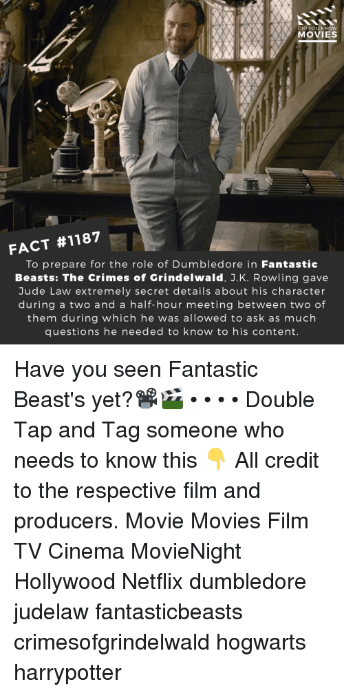 Dumbledore, Memes, and Movies: DID YOU KNOW  MOVIES  FACT #1187  To prepare for the role of Dumbledore in Fantastic  Beasts: The Crimes of Grindelwald, J.K. Rowling gave  Jude Law extremely secret details about his character  during a two and a half-hour meeting between two of  them during which he was allowed to ask as much  questions he needed to know to his content Have you seen Fantastic Beast's yet?📽️🎬 • • • • Double Tap and Tag someone who needs to know this 👇 All credit to the respective film and producers. Movie Movies Film TV Cinema MovieNight Hollywood Netflix dumbledore judelaw fantasticbeasts crimesofgrindelwald hogwarts harrypotter