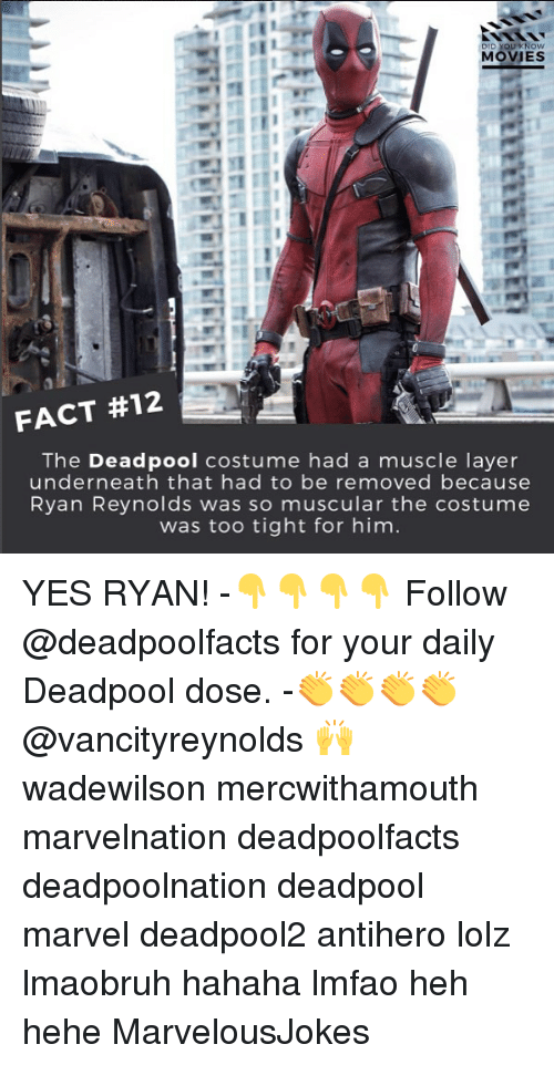 Underneathe: DID YOU KNOW  MOVIES  FACT #12  The Deadpool costume had a muscle layer  underneath that had to be removed because  Ryan Reynolds was so muscular the costume  was too tight for him YES RYAN! -👇👇👇👇 Follow @deadpoolfacts for your daily Deadpool dose. -👏👏👏👏 @vancityreynolds 🙌 wadewilson mercwithamouth marvelnation deadpoolfacts deadpoolnation deadpool marvel deadpool2 antihero lolz lmaobruh hahaha lmfao heh hehe MarvelousJokes