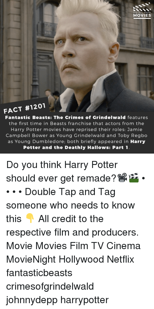 Dumbledore, Harry Potter, and Memes: DID YOU KNOW  MOVIES  FACT #1201  Fantastic Beasts: The Crimes of Grindelwald features  the first time in Beasts franchise that actors from the  Harry Potter movies have reprised their roles: Jamie  Campbell Bower as Young Grindelwald and Toby Regbo  as Young Dumbledore; both briefly appeared in Harry  Potter and the Deathly Hallows: Part1 Do you think Harry Potter should ever get remade?📽️🎬 • • • • Double Tap and Tag someone who needs to know this 👇 All credit to the respective film and producers. Movie Movies Film TV Cinema MovieNight Hollywood Netflix fantasticbeasts crimesofgrindelwald johnnydepp harrypotter