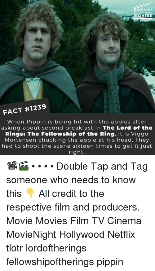 chucking: DID YOU KNOw  MOVIES  FACT #1239  When Pippin is being hit with the apples after  asking about second breakfast in The Lord of the  Rings: The Fellowship of the Ring, it is Viggo  Mortensen chucking the apple at his head. They  had to shoot the scene sixteen times to get it just  right. 📽️🎬 • • • • Double Tap and Tag someone who needs to know this 👇 All credit to the respective film and producers. Movie Movies Film TV Cinema MovieNight Hollywood Netflix tlotr lordoftherings fellowshipoftherings pippin