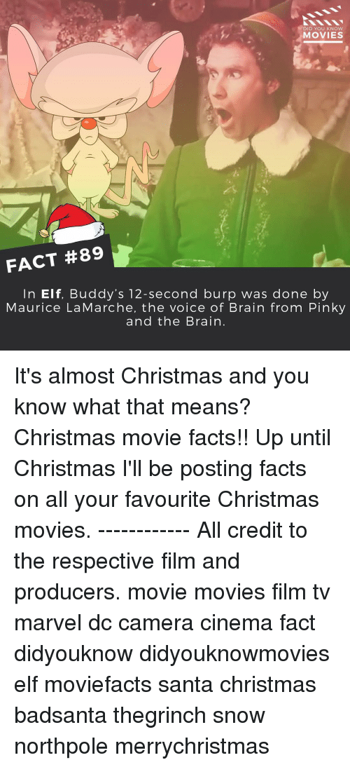 Brains, Elf, and Memes: DID YOU KNOW  MOVIES  FACT #89  In Elf, Buddy's 12-second burp was done by  Maurice La Marche, the voice of Brain from Pinky  and the Brain It's almost Christmas and you know what that means? Christmas movie facts!! Up until Christmas I'll be posting facts on all your favourite Christmas movies. ------------ All credit to the respective film and producers. movie movies film tv marvel dc camera cinema fact didyouknow didyouknowmovies elf moviefacts santa christmas badsanta thegrinch snow northpole merrychristmas