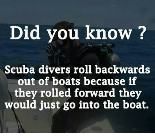 scuba: Did you know ?  Scuba divers roll backwards  out of boats because if  they rolled forward they  would just go into the boat.