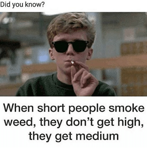 shortness: Did you know?  When short people smoke  weed, they don't get high,  they get medium
