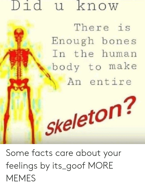 goof: Didu knowW  There is  Enough bones  In the human  body to make  An entire  Skeleton? Some facts care about your feelings by its_goof MORE MEMES