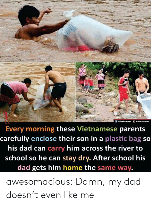 like me: /didyouknowpaget odidyouknewpage  Every morning these Vietnamese parents  carefully enclose their son in a plastic bag so  his dad can carry him across the river to  school so he can stay dry. After school his  dad gets him home the same way. awesomacious:  Damn, my dad doesn't even like me