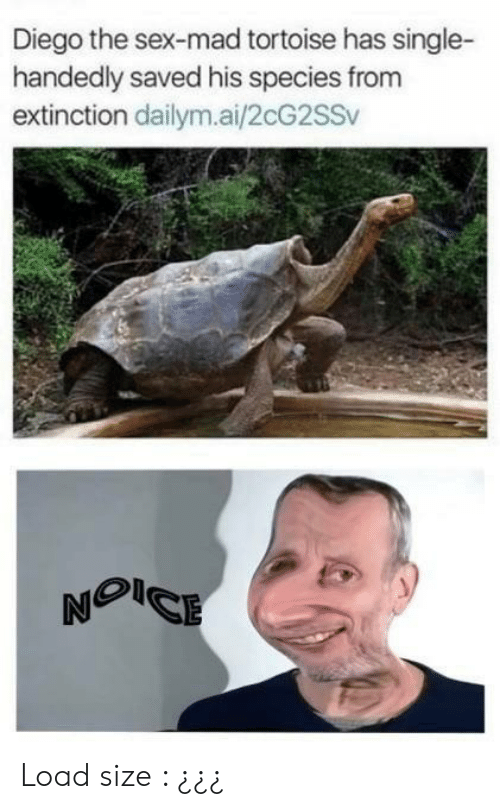 Sex, Mad, and Single: Diego the sex-mad tortoise has single-  handedly saved his species from  extinction dailym.ai/2cG2SSv Load size : ¿¿¿