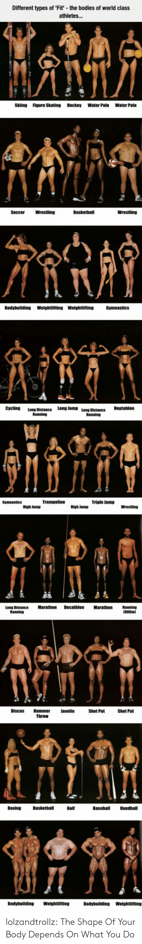 Different Types Of: Different types of 'Fit' the boo  of world class  athletes...  Skiing  Figure Skating Hockey  Water Polo  Water Polo  Basketball  Wrestling  Wrestling  Soccer  Bodybuilding  Weightlifting Weightlifting  Cycling  Long Jump  Long Distance  Bunninn  Triple Jump  Decathlon  Marathon  Marathon  Long Distance  Shot Put  Throw  Basketball  Baseball  Handball  Bοxing  Golf  Weightlifting  Bodybuilding  Bodybuilding  Weightlifting lolzandtrollz:  The Shape Of Your Body Depends On What You Do