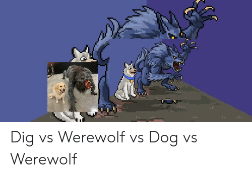 Reddit, Dig, and Dog: Dig vs Werewolf vs Dog vs Werewolf