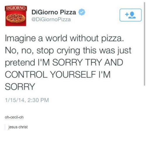 Crying, Jesus, and Pizza: DIGIORNO  DiGiorno Pizza  DiGiornoPizza  Imagine a world without pizza.  No, no, stop crying this was just  pretend l'M SORRY TRY AND  CONTROL YOURSELF I'M  SORRY  1/15/14, 2:30 PM  oh-cecil-oh  jesus christ