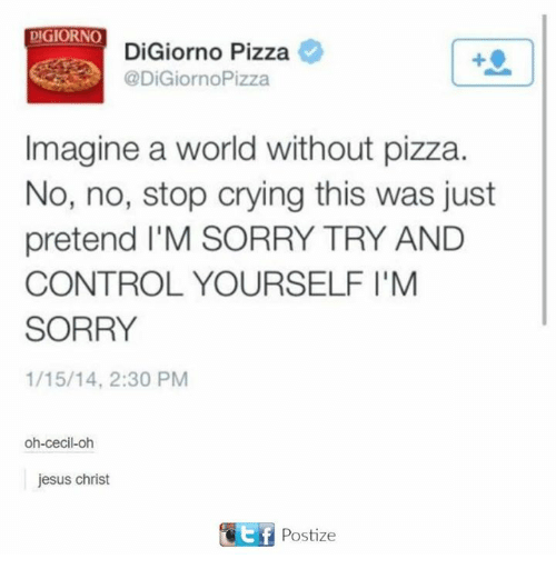 Crying, Jesus, and Pizza: DIGIORNO  DiGiorno Pizza e  @DiGiornoPizza  Imagine a world without pizza.  No, no, stop crying this was just  pretend I'M SORRY TRY AND  CONTROL YOURSELF I'M  SORRY  1/15/14, 2:30 PM  oh-cecil-oh  jesus christ  f Postize