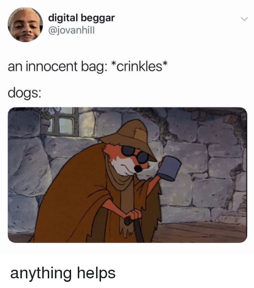 Dogs, Memes, and Helps: digital beggar  @jovanhill  an innocent bag: *crinkles*  dogs:  S. anything helps