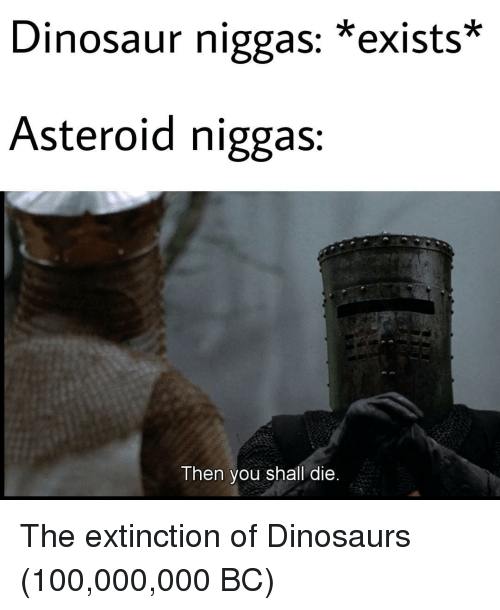 asteroid: Dinosaur niggas: *exists*  Asteroid niggas  Then you shall die The extinction of Dinosaurs (100,000,000 BC)