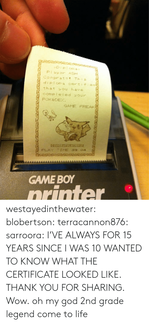 game boy: diploma certifias  that sou have  oomp leced your  PoxèDEX  GAME FREAK  PLAY TIME 39  04  GAME BOY  orinter westayedinthewater: blobertson:  terracannon876:  sarroora:  I'VE ALWAYS FOR 15 YEARS SINCE I WAS 10 WANTED TO KNOW WHAT THE CERTIFICATE LOOKED LIKE. THANK YOU FOR SHARING.  Wow.  oh my god  2nd grade legend come to life