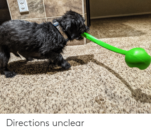 Directions Unclear: Directions unclear