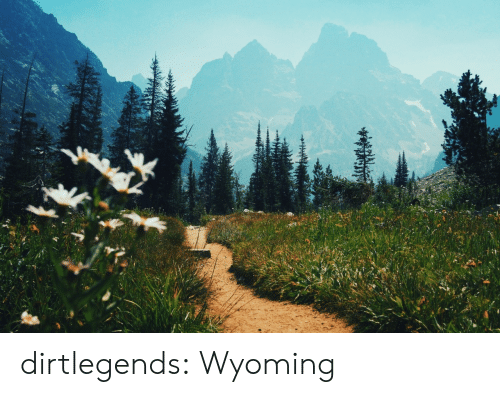 Target, Tumblr, and Blog: dirtlegends: Wyoming