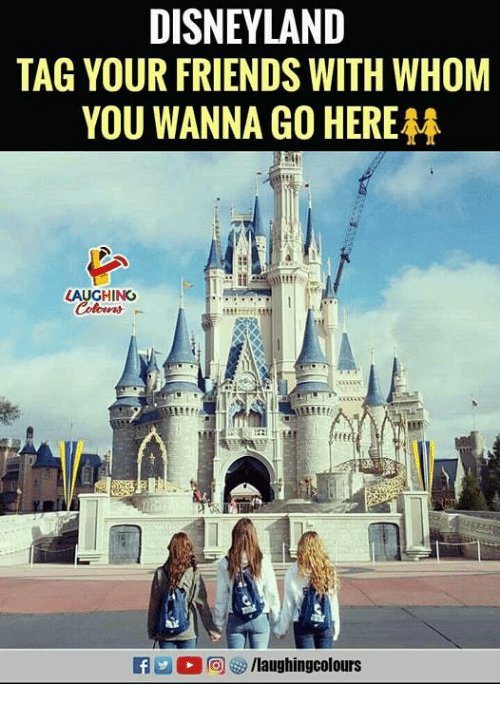 Disneyland, Friends, and Indianpeoplefacebook: DISNEYLAND  TAG YOUR FRIENDS WITH WHOM  YOU WANNA GO HERE  LAUGHING  f/laughingcolours