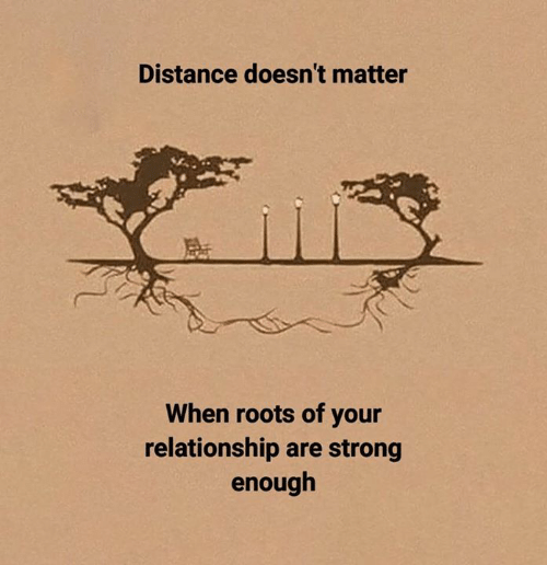 roots: Distance doesn't matter  When roots of your  relationship are strong  enough