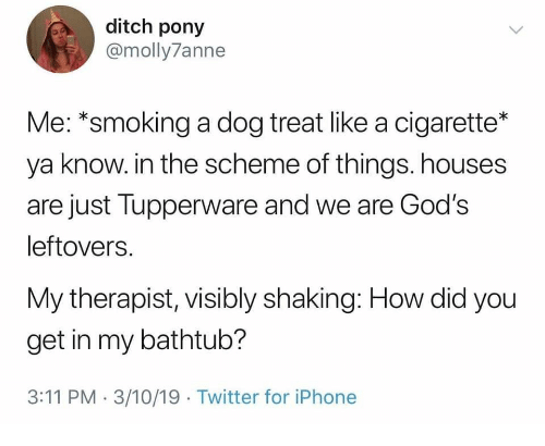 ditch: ditch pony  @molly7anne  Me: *smoking a dog treat like a cigarette*  ya know. in the scheme of things. houses  are just Tupperware and we are God's  leftovers.  My therapist, visibly shaking: How did you  get in my bathtub?  3:11 PM 3/10/19 Twitter for iPhone