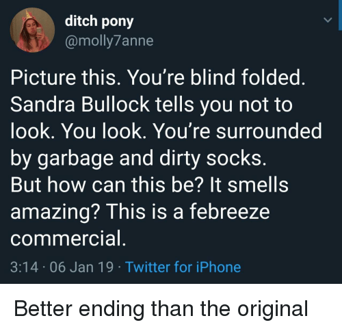 ditch: ditch pony  @molly7anne  Picture this, You're blind foldeg  Sandra Bullock tells you not to  ook, You look. You're surrounded  by garbage and dirty socks  But how can this be? It smells  amazing? This is a febreeze  commercia  3:14 06 Jan 19 Twitter for iPhone Better ending than the original