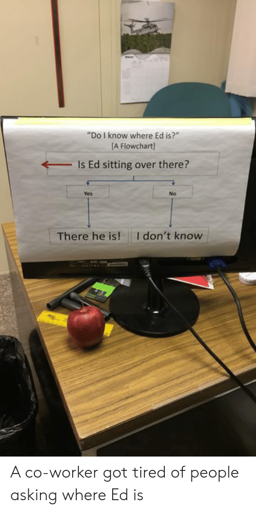 """Asking, Got, and Yes: """"Do I know where Ed is?""""  [A Flowchart)  Is Ed sitting over there?  Yes  No  I don't know  There he is! A co-worker got tired of people asking where Ed is"""