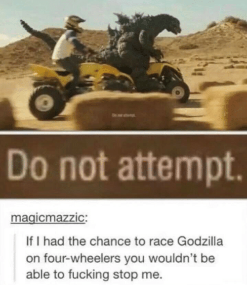 Fucking, Godzilla, and Race: Do not attempt.  magicmazzic:  If I had the chance to race Godzilla  on four-wheelers you wouldn't be  able to fucking stop me.