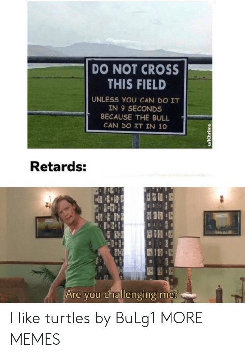 Dank, Memes, and Target: DO NOT CROSS  THIS FIELD  UNLESS YOU CAN DO IT  IN 9 SECONDS  BECAUSE THE BULL  CAN DO IT IN 10  Retards:  Are you challenging me?  u/Khrime I like turtles by BuLg1 MORE MEMES