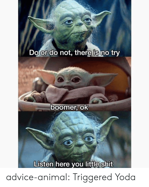Advice Animal: Do or do not, there is no try  ०ा  boomer, ok  Listen here you little shit advice-animal:  Triggered Yoda