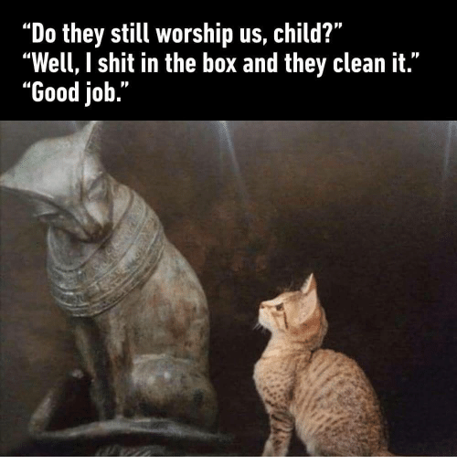 """Shit, Good, and Job: """"Do they still worship us, child?""""  """"Well, I shit in the box and they clean it.""""  """"Good job."""""""