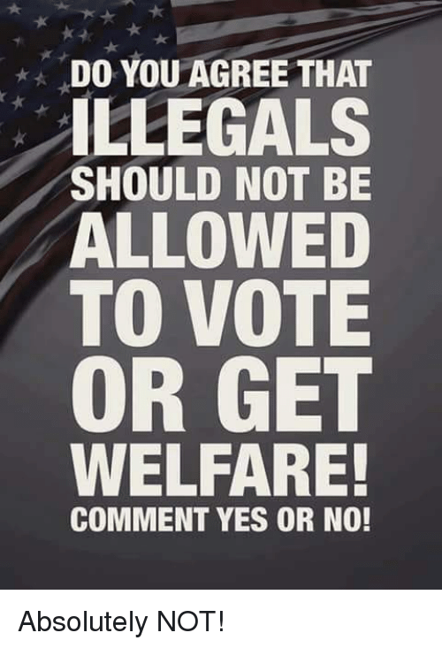 Memes, 🤖, and Yes: DO YOU AGREE THAT  ILLEGALS  SHOULD NOT BE  ALLOWED  TO VOTE  OR GET  WELFARE!  COMMENT YES OR NO! Absolutely NOT!