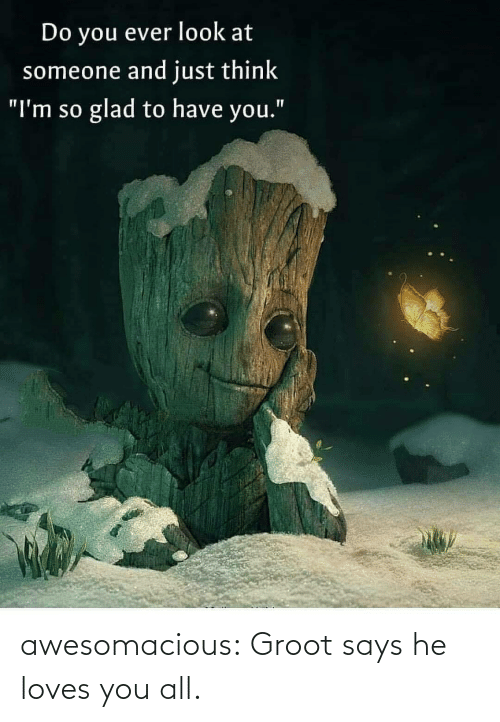 """loves: Do you ever look at  someone and just think  glad to have you.""""  """"I'm so awesomacious:  Groot says he loves you all."""