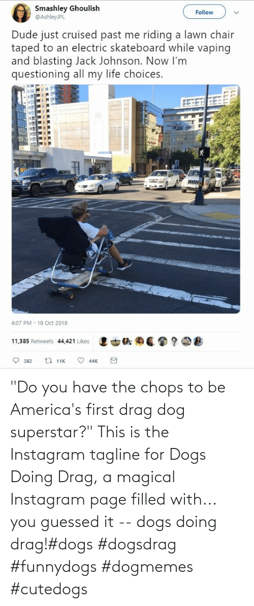 "page: ""Do you have the chops to be America's first drag dog superstar?"" This is the Instagram tagline for Dogs Doing Drag, a magical Instagram page filled with... you guessed it -- dogs doing drag!#dogs #dogsdrag #funnydogs #dogmemes #cutedogs"