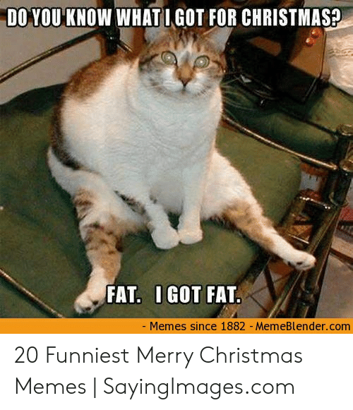 Merry Christmas Memes: DO YOU KNOW WHATI GOT FOR CHRISTMAS?  FAT. IGOT FAT.  Memes since 1882 - MemeBlender.com 20 Funniest Merry Christmas Memes | SayingImages.com