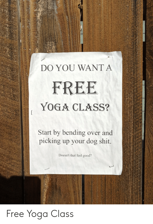 Yoga: DO YOU WANT A  FREE  YOGA CLASS?  Start by bending over and  picking up your dog shit.  Doesn't that feel good? Free Yoga Class