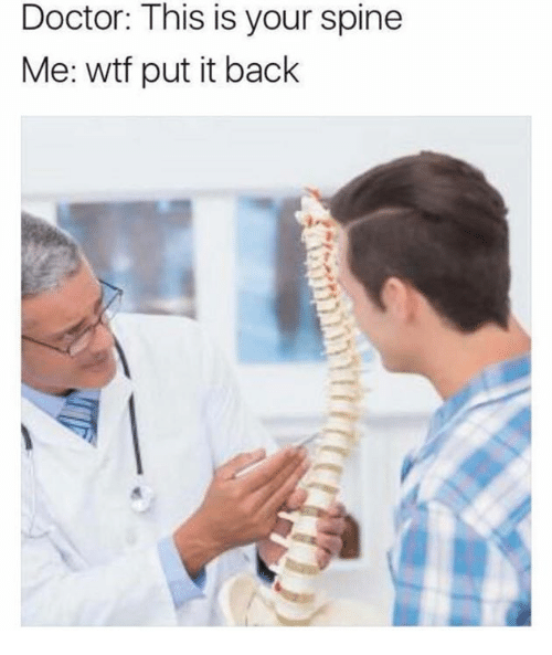 Doctor, Wtf, and Back: Doctor: This is your spine  Me: wtf put it back