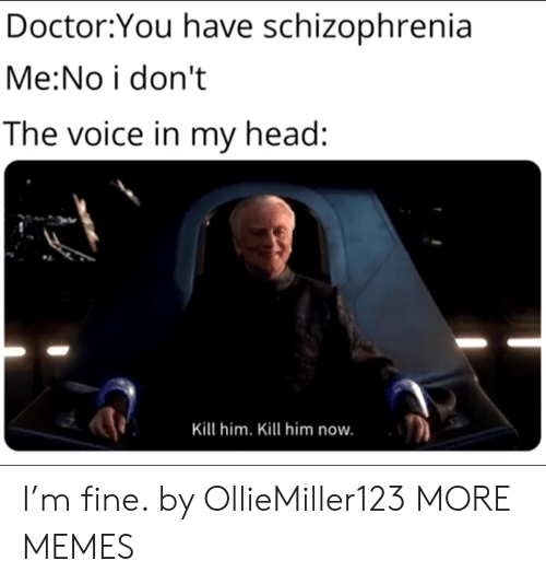 the voice: Doctor:You have schizophrenia  Me:No i don't  The voice in my head:  Kill him. Kill him now. I'm fine. by OllieMiller123 MORE MEMES