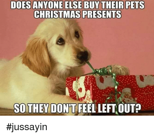 Jussayin: DOES ANYONE ELSE BUY THEIR PETS  CHRISTMAS PRESENTS  SOTHEY DON'T FEEL LEFT OUT? #jussayin