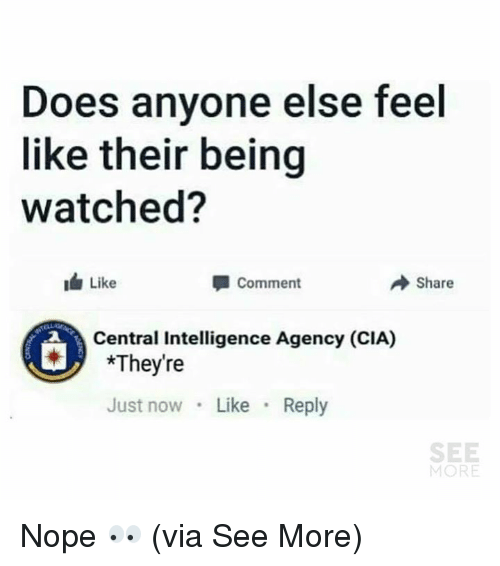 Noping: Does anyone else feel  like their being  watched?  Like  Comment  Share  Central Intelligence Agency (CIA)  *They're  Just now Like Reply  SEE  MORE Nope 👀  (via See More)
