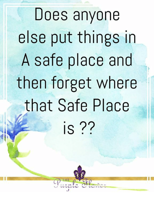 Memes, 🤖, and Safe: Does anyone  else put things in  A safe place and  then forget where  that Safe Place  IS??