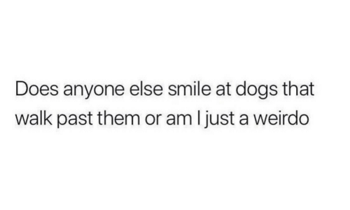 weirdo: Does anyone else smile at dogs that  walk past them or am ljust a weirdo