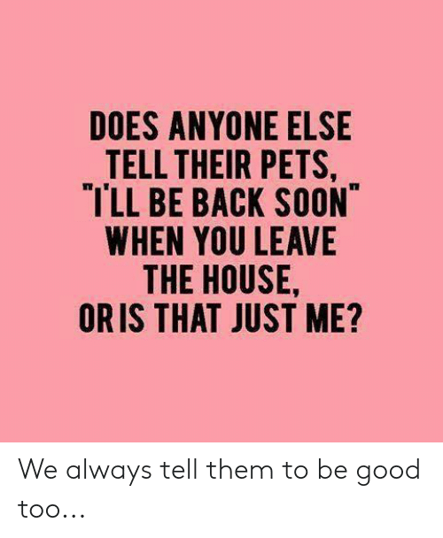 Memes, Soon..., and Pets: DOES ANYONE ELSE  TELL THEIR PETS  TLL BE BACK SOON  WHEN YOU LEAVE  THE HOUSE  ORIS THAT JUST ME? We always tell them to be good too...