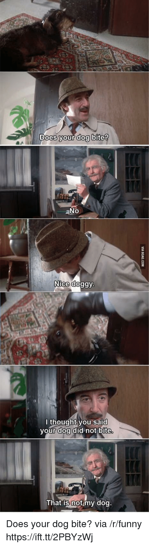 Funny, Thought, and Nice: Does vour doo bite  aNo  Nice doggy  l thought you said  your doa did not bite  That is notmy dog Does your dog bite? via /r/funny https://ift.tt/2PBYzWj
