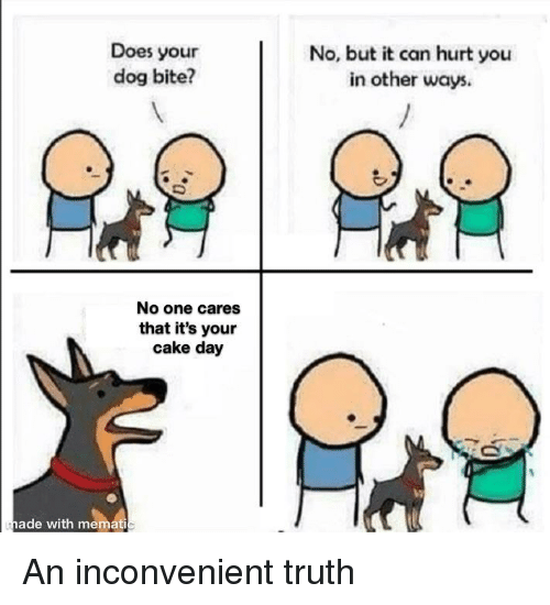 Does Your Dog Bite? No but It Can Hurt You in Other Ways No One