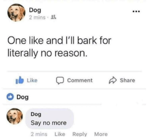 Say No More, Reason, and Dog: Dog  2 mins  One like and I'll bark for  literally no reason.  b Like Comment Share  Dog  Dog  Say no more  2 mins Like Reply More