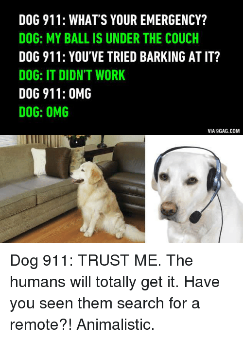 It Dog Meme Have You Tried Barking At It