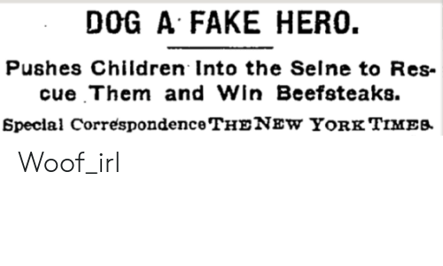 Children, Fake, and Irl: DOG A FAKE HERO.  Pushes Children Into the Selne to Res  cue Them and Win Beefsteaks  Special CorrespondenceTHENEw YoRk TIMEB Woof_irl