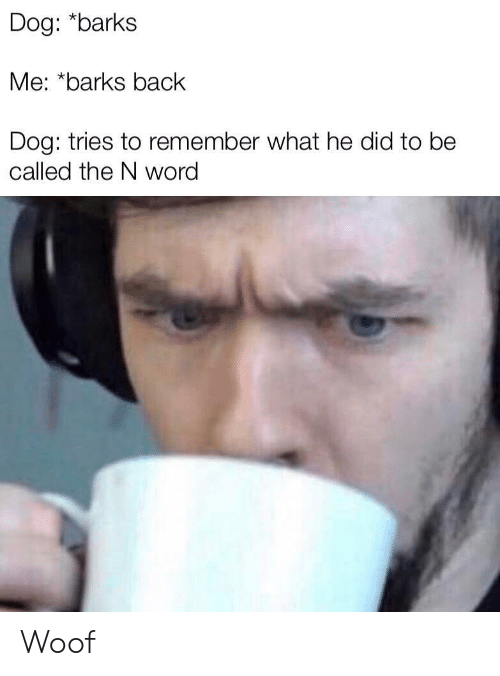 Word, Back, and Dog: Dog: *barks  Me: *barks back  Dog: tries to remember what he did to be  called the N word Woof