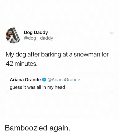 Ariana Grande, Head, and Memes: Dog Daddy  @dog_daddy  My dog after barking at a snowman for  42 minutes.  Ariana Grande@ArianaGrande  guess it was all in my head Bamboozled again.