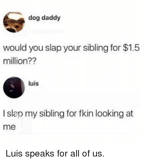 Memes, 🤖, and Dog: dog daddy  would you slap your sibling for $1.5  million??  luis  I slap my sibling for fkin looking at  me Luis speaks for all of us.