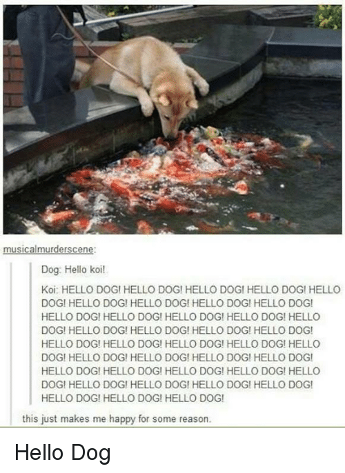 Hello, Tumblr, and Happy: Dog: Hello koi!  Koi: HELLO DOG! HELLO DOG! HELLO DOG! HELLO DOG! HELLO  DOGI HELLO DOG! HELLO DOGI HELLO DOG! HELLO DOG!  HELLO DOG! HELLO DOG! HELLO DOG! HELLO DOG! HELLO  DOG! HELLO DOG! HELLO DOG! HELLO DOG! HELLO DOG!  HELLO DOG! HELLO DOG! HELLO DOG! HELLO DOG! HELLO  DOG! HELLO DOG! HELLO DOG! HELLO DOG! HELLO DOG!  HELLO DOG! HELLO DOG! HELLO DOG! HELLO DOG! HELLO  DOGI HELLO DOG! HELLO DOGI HELLO DOG! HELLO DOG  HELLO DOG! HELLO DOG! HELLO DOG!  this just makes me happy for some reason