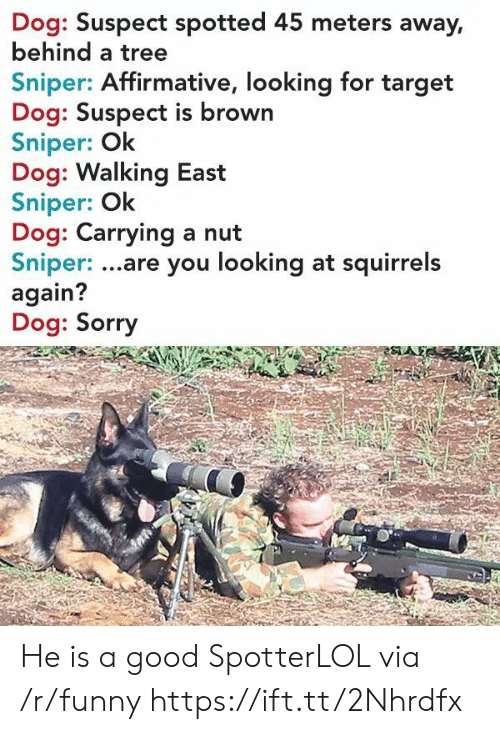 Affirmative: Dog: Suspect spotted 45 meters away,  behind a tree  Sniper: Affirmative, looking for target  Dog: Suspect is brown  Sniper: Ok  Dog: Walking East  Sniper: Ok  Dog: Carrying a nut  Sniper: ...are you looking at squirrels  again?  Dog: Sorry He is a good SpotterLOL via /r/funny https://ift.tt/2Nhrdfx